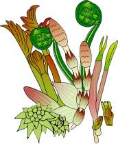春の食材~山菜~